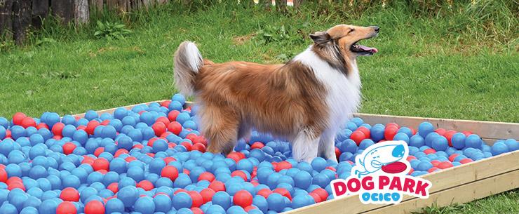 Ocico dog Park Parque Para Perros