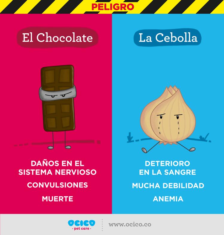 Cebolla y Chocolate