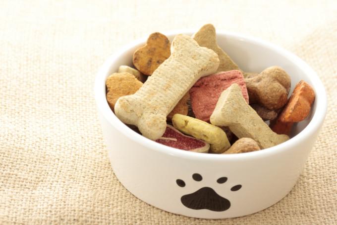 Snacks para perros 1